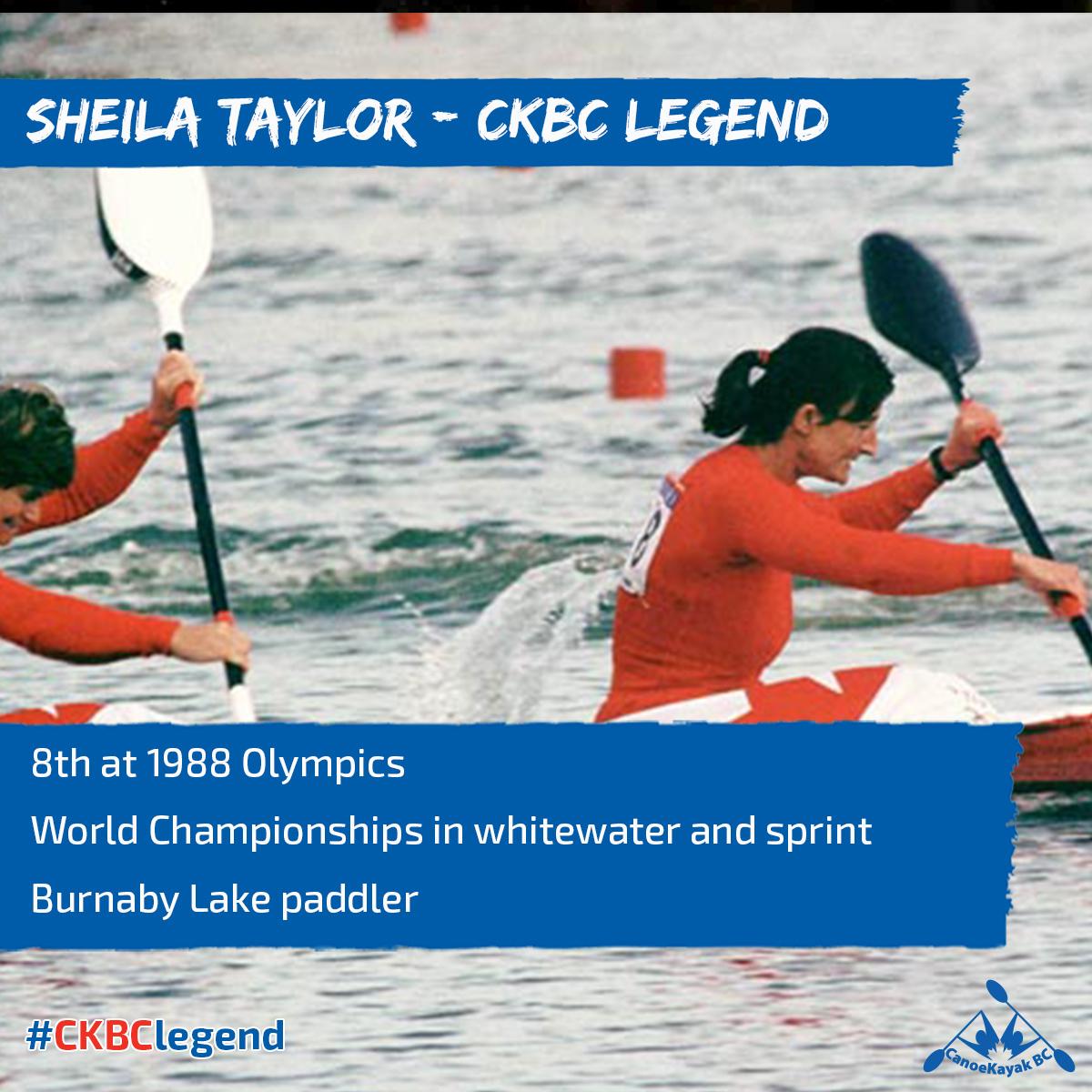 Shelia Taylor