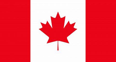 Ecopilot Canada flag
