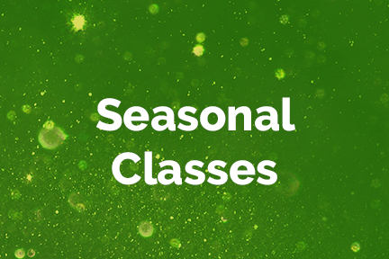 Seasonal Classes