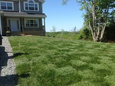 Installing turn grass to your Halifax or Dartmouth property will make your yard stand out.